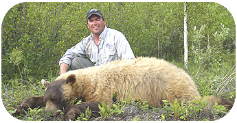 Bear Hunting - Blonde & Black Bear