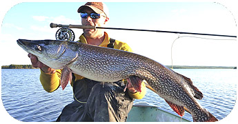 Trophy Pike Fishing